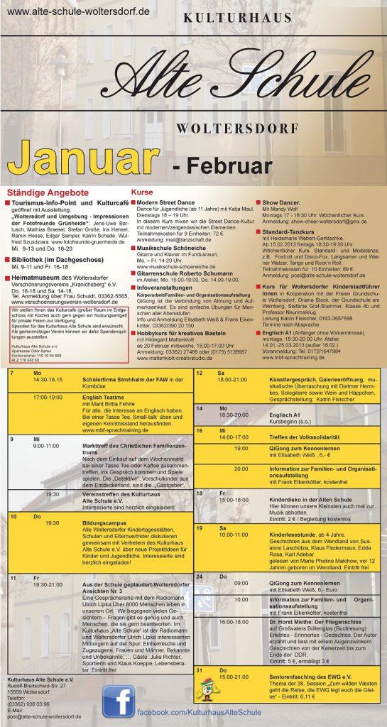 Programmflyer Januar 2013